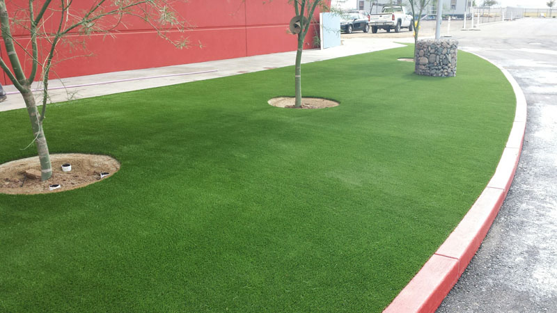 Libra Grass Job-65oz3