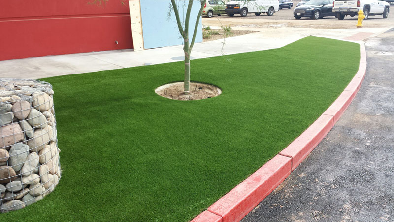 Libra Grass Job-65oz4