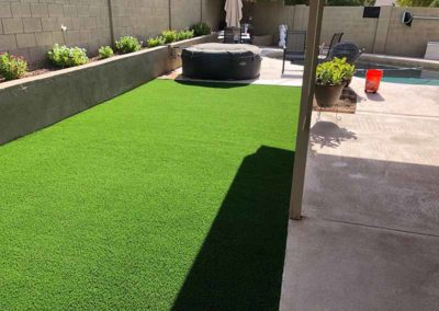 Artificial Turf - 60oz libra turf 2